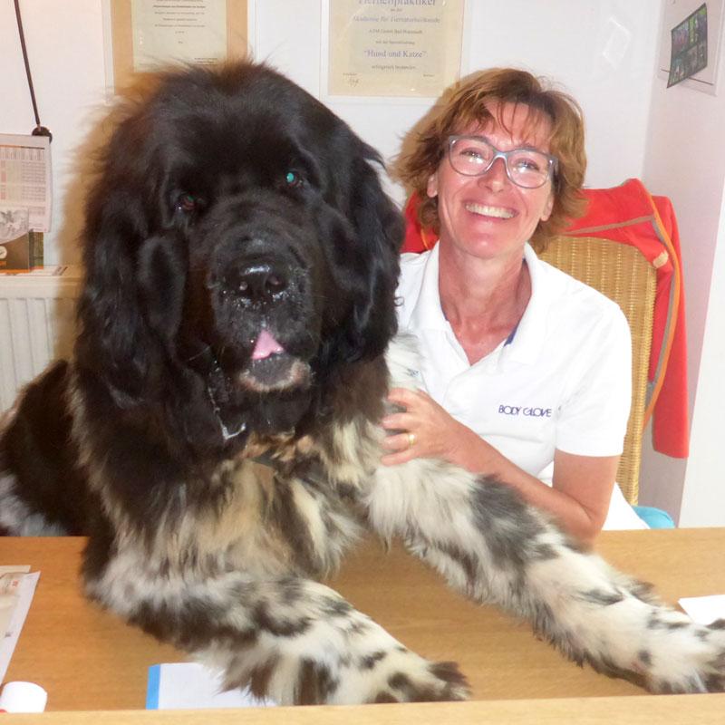 Physiotherapie Hunde Claudia Kniese
